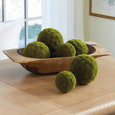 Online Designer Combined Living/Dining Moss Sphere