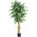 Online Designer Bedroom Palace Style Ficus Tree with Pot
