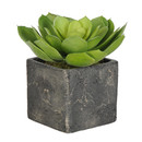 Online Designer Living Room Artificial Echeveria Succulent Desk Top Plant in Pot