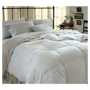 Online Designer Bedroom Grand All Season Down Alternative Comforter