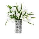 Online Designer Combined Living/Dining Tulips in Vase by Dalmarko Designs