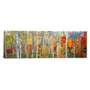 Online Designer Home/Small Office Panoramic Fall Trees, Shinhodaka, Gifu, Japan Photographic Print on Canvas by iCanvas