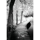 Online Designer Hallway/Entry Take a Walk by Ilona Wellmann Photographic Print on Wrapped Canvas
