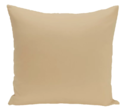 Online Designer Living Room Carron Solid Throw Pillow by Andover Mills
