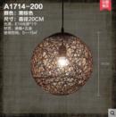 Online Designer Business/Office ceiling lamp