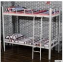 Online Designer Business/Office bunk bed