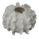 Online Designer Living Room CORAL DÉCOR SCULPTURE
