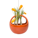 Online Designer Kitchen Mod Hanging Basket Planter