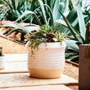 Online Designer Living Room Speckled Texture Planter