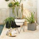 Online Designer Living Room Iris Planter + Chevron Stand
