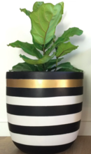 Online Designer Kitchen Stripe Planter Pot