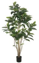 Online Designer Studio Darby Home Co Rubber Foliage Tree in Pot