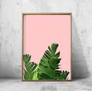 Online Designer Bedroom Palm Leaf Print Pink Green Wall art Foliage
