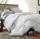 Online Designer Bedroom 233 Thread Count Lightweight Down Comforter