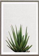 Online Designer Living Room Cactus Home Decor, Mexican Print