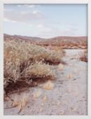 Online Designer Bedroom desert hot springs study 4