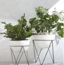 Online Designer Combined Living/Dining Planter