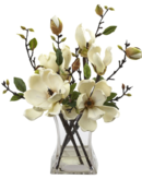 Online Designer Combined Living/Dining Magnolia Arrangement with Vase