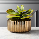 Online Designer Combined Living/Dining potted faux succulent gold pot