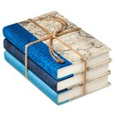 Online Designer Living Room Blue Mix Decorative Book Set of 3