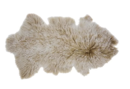 Online Designer Living Room Arkose Shaggy Sheepskin Beige Area Rug by Foundry Select
