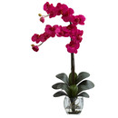 Online Designer Living Room Double Phalaenopsis Orchid in Vase