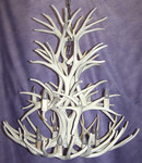 Online Designer Hallway/Entry X-Large Reproduction 20 Antler Mule Deer Cascade Chandelier RL-5.