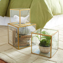 Online Designer Living Room Havana Glass Display Boxes by Birch Lane