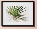 Online Designer Living Room kathleen with black frame