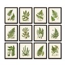 Online Designer Bedroom Vintage Ferns Print Set No. 35