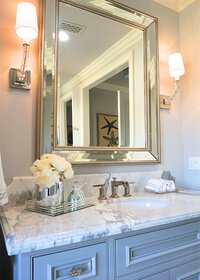 Online design Traditional Bathroom by Elyse C. thumbnail