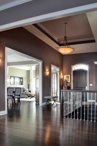 Online design Transitional Hallway/Entry by Gail K. thumbnail