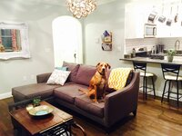 Online design Transitional Living Room by Kerry Z. thumbnail