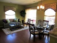Online design Transitional Living Room by Megan K. thumbnail