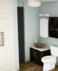 Online design Transitional Bathroom by Tabitha M thumbnail