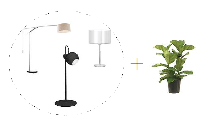 bachelor pad accessories
