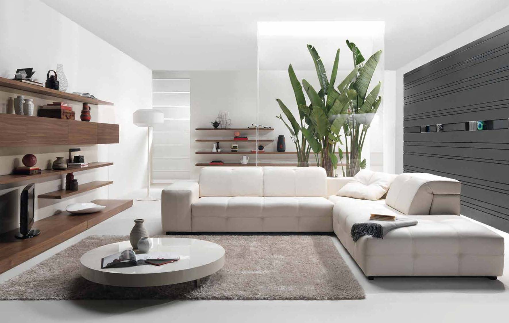 Lovely Modern Interior Decor Part - 7: Modern-minimalist-style-living-room-decorating-with-shaggy-
