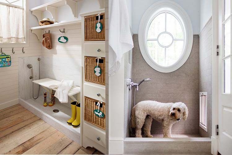 10 Awesome Pet-Friendly Home Inventions - Decorilla on copy cat chic nursery room design, cat shelves, cat bathroom accessories, cat room house design, cat condo from old dresser, cat house home design, cat staircase design, cat chair, cat wall walks designs, cat interior design, cat from home, cat stairs, cats in the kitchen design,