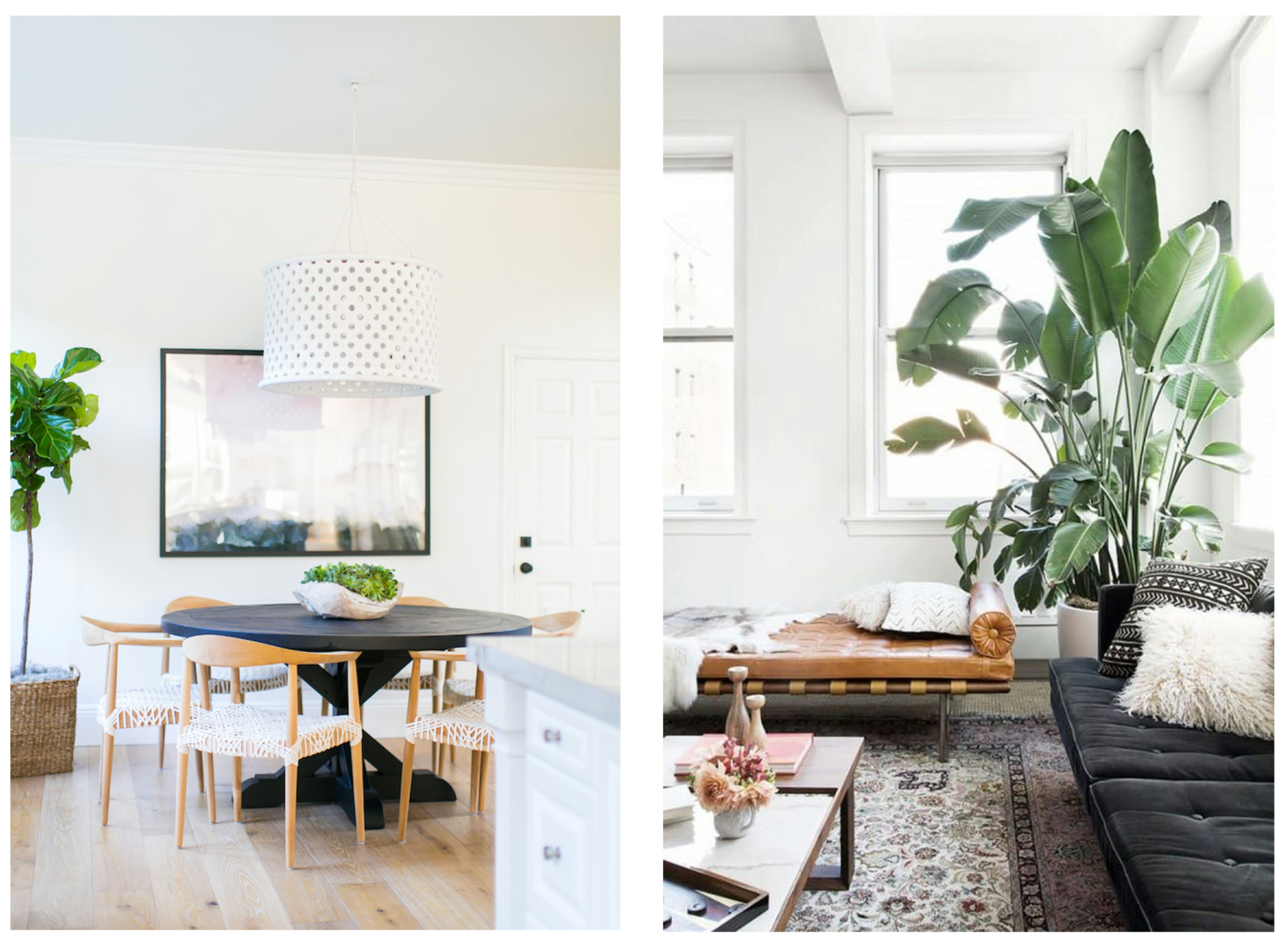 how to incorporate nature into your home- indoor floor plants ...