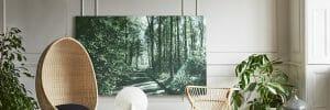buy original art to create a botanical wonderlad