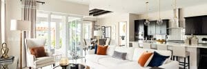 hire-a-interior-designer-in-orlando-anne-rue-bright-living-room