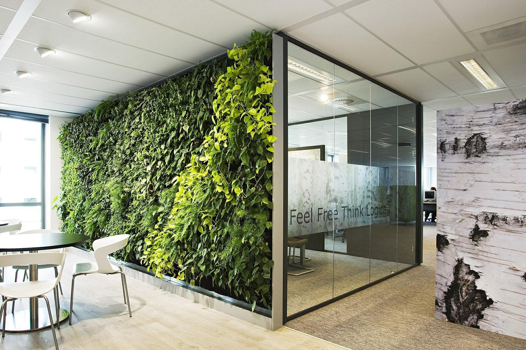 contemporary office design nature plant wall