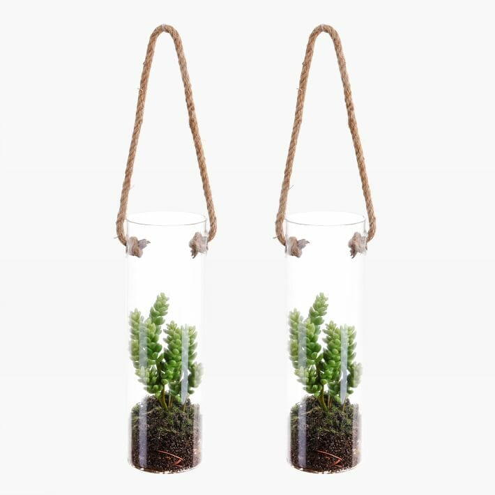 home decor gift ideas hanging succulent