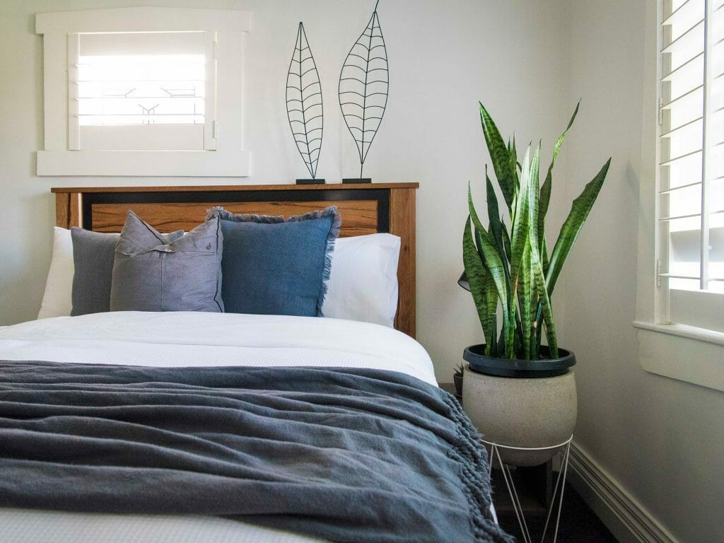 bedroom_interior_design_plants