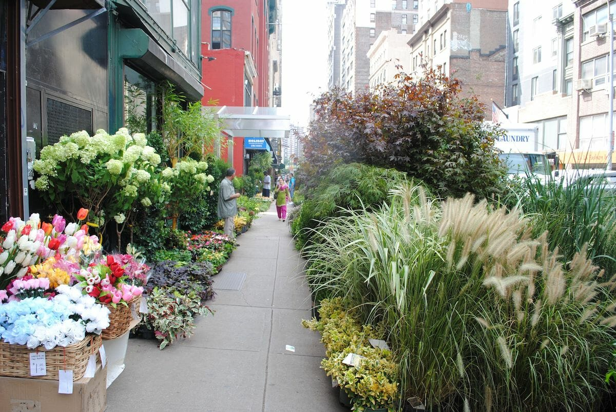 NYC flower market street view