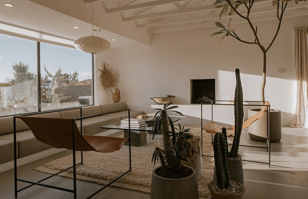Alternative interior decorating with plants - The Spaces
