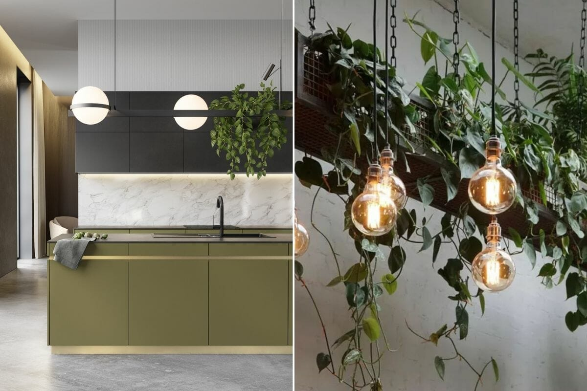 Feature lights and interior decorating with plants